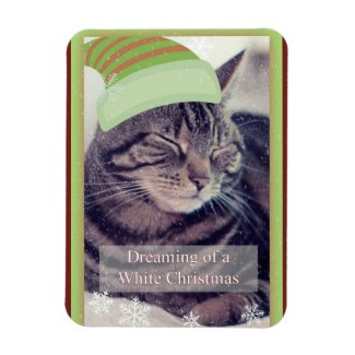 Dreaming of a White Christmas Cat Magnet