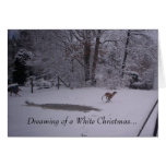 Dreaming of a White Christmas... Greeting Card
