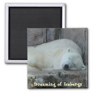 Dreaming of Icebergs 2 Inch Square Magnet