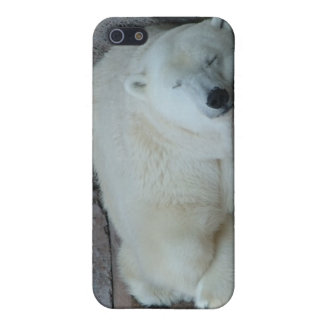 Dreaming of Icebergs Cover For iPhone 5