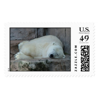 Dreaming of Icebergs Postage