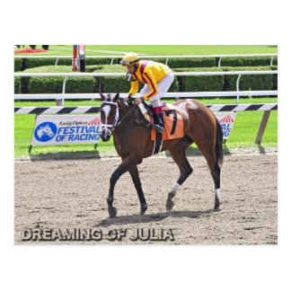 Dreaming of Julia Postcard