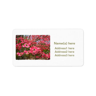 Dreaming of Pink Dogwood Blooms in Spring! Label