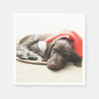 Dreaming of Santa - German Shorthair Puppy Standard Cocktail Napkin