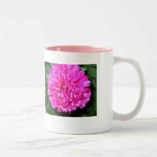 Dreaming of Spring Two-Tone Coffee Mug
