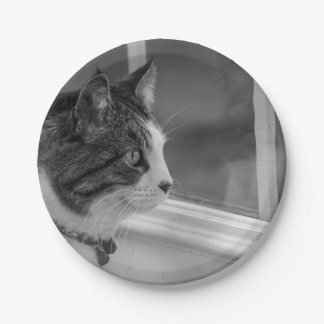 Dreaming Of Warmer Weather Grayscale Paper Plate