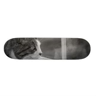 Dreaming Of Warmer Weather Grayscale Skateboard