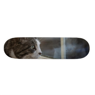 Dreaming Of Warmer Weather To Go Outside Skateboard