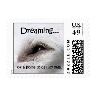 Dreaming... Postage Stamp