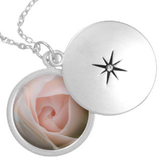 Dreaming rose silver plated necklace