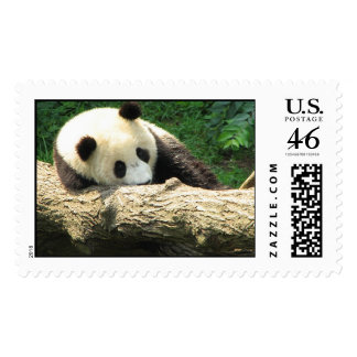 Dreaming Tai Shan Stamps