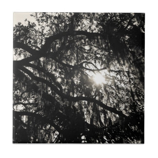 Dreaming Under the Oak Tree Tile