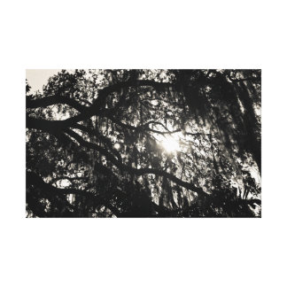 Dreaming Under the Oak Tree Wrapped Canvas Gallery Wrap Canvas