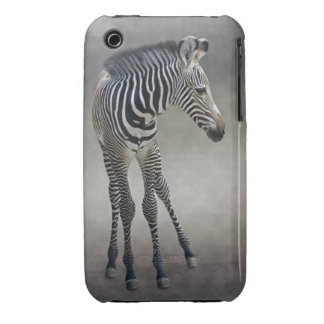 Dreams in Black and White iPhone 3 Case-Mate Case