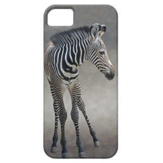 Dreams in Black and White iPhone 5 Case-Mate Case