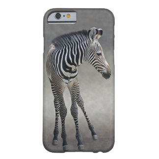 Dreams in Black and White iPhone 6 Case