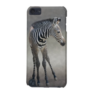Dreams in Black and White iPod Touch Case