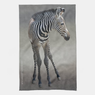 Dreams in Black and White Kitchen Towel