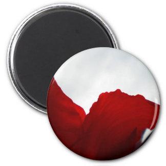 Dreams of Australia Magnet