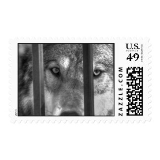 Dreams Of Freedom III Postage Stamps