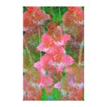 Dreams of Gladiolus Stretched Canvas Print