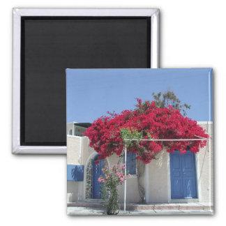 Dreams of Greece Magnet
