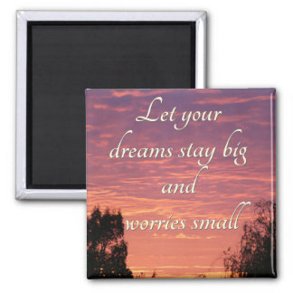 Dreams stay big magnets