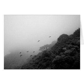 Dreams Taking Flight/Nature B&W Photography Card