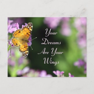 Dreams & Wings Butterfly Photography Post Card