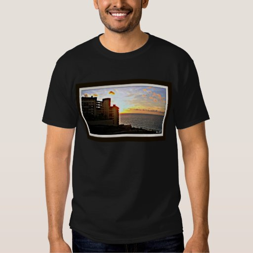 DreamView Remera