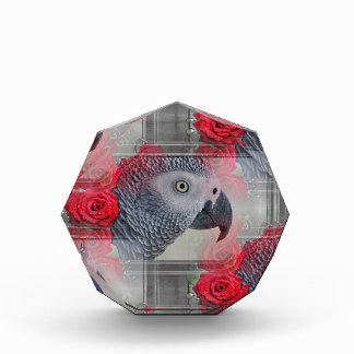 Dreamy African Grey with Red Roses Awards