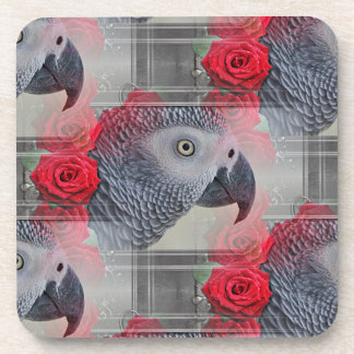Dreamy African Grey with Red Roses Beverage Coaster
