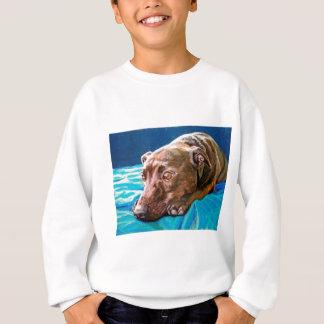 'Dreamy Barney' Sweatshirt