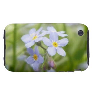 Dreamy Blue Forget Me Nots Tough iPhone 3 Covers
