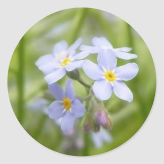 Dreamy Blue Forget Me Nots Classic Round Sticker