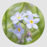 Dreamy Blue Forget Me Nots Stickers