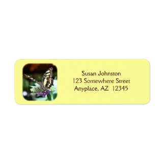 Dreamy Butterfly Insect Address Label