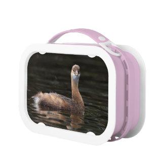 Dreamy Cute Lunch Box