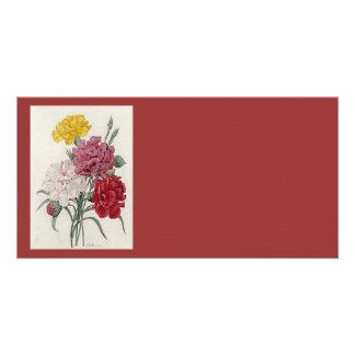 Dreamy Dianthus Card