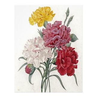 Dreamy Dianthus Letterhead