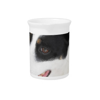Dreamy dog puppy closeup drink pitchers
