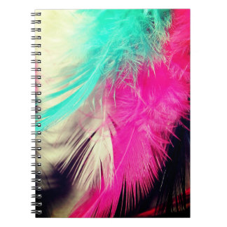 Dreamy Feathers Notebook