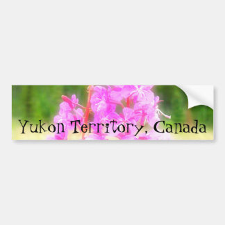 Dreamy Fireweed; Yukon Territory Souvenir Car Bumper Sticker