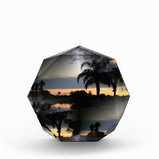 Dreamy Florida Sunset Awards