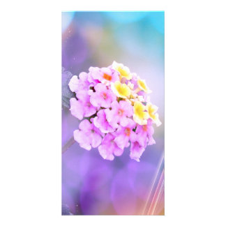 Dreamy Flower Picture Card