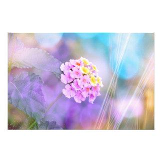 Dreamy Flower Art Photo