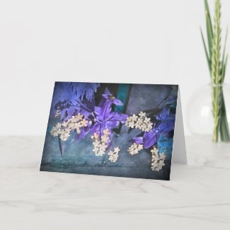 Dreamy Forget Me Nots (Myosotis) card