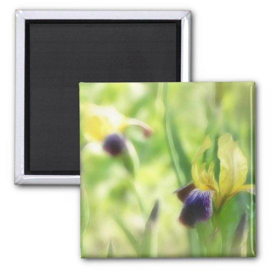 Dreamy Garden Irises 2 Inch Square Magnet