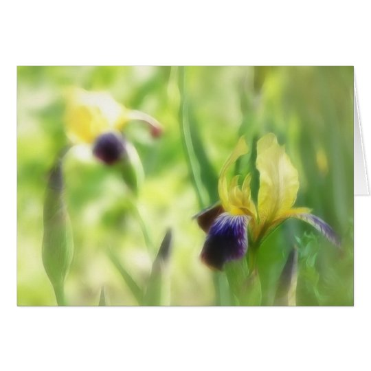 Dreamy Garden Irises Card