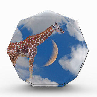Dreamy Giraffe Award